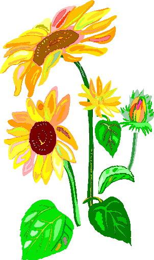 302x508 Free Sunflower Border Clipart Image