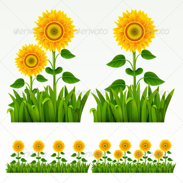 590x590 Grass Border Backgrounds, Border, Bush, Clip Art, Cut Out