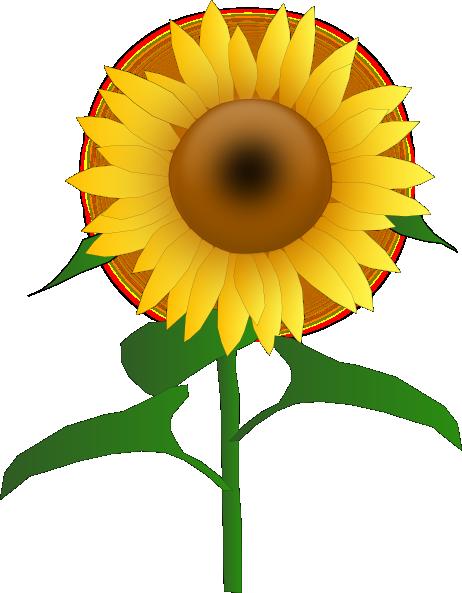 462x593 Sunflower Border Clipart Panda