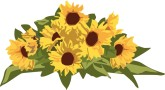 165x90 Sunflower Border Clipart