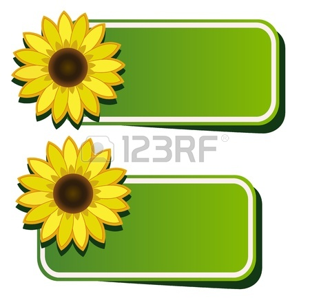 450x433 Black And White Sunflower Photography Clipart Panda