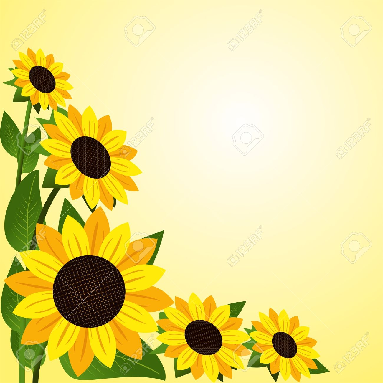 1300x1300 Sunflower Picture Frames Gallery