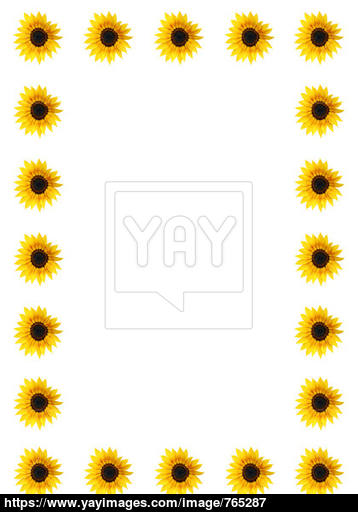 358x512 Sunflower Border Image