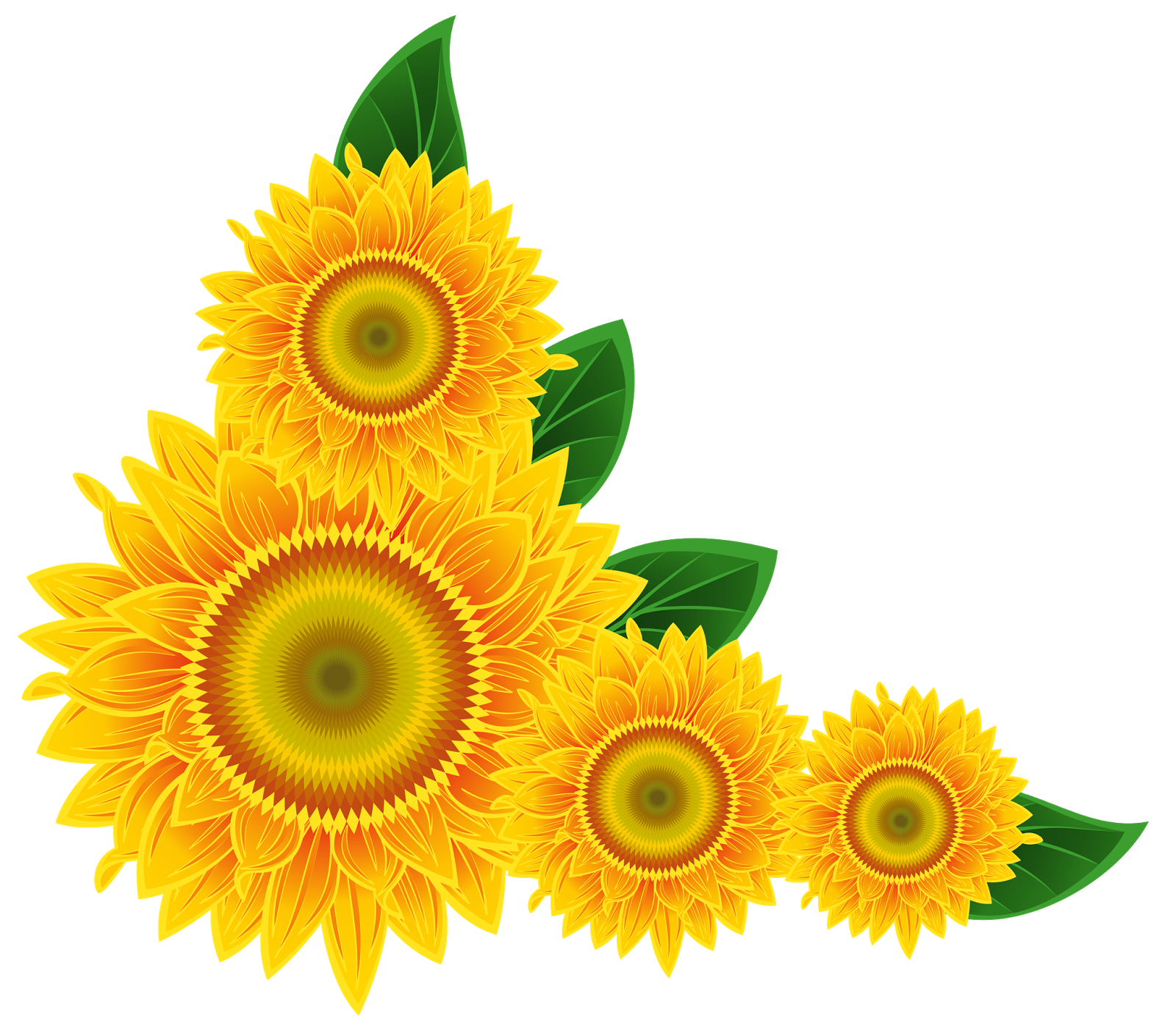 1600x1402 Clipart Sunflower Border Clipart
