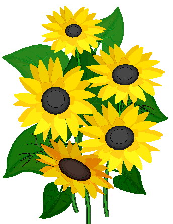 344x445 Clipart Sunflowers