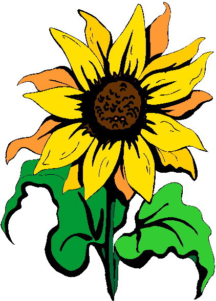 422x589 Free Sunflower Border Clipart Image