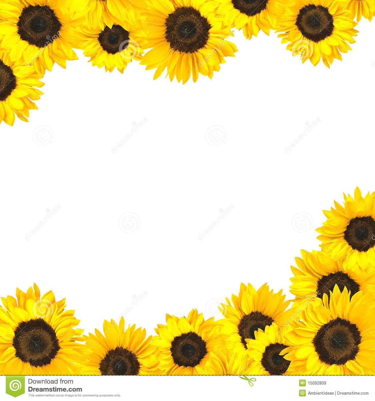 Sunflower Border Clipart | Free download on ClipArtMag