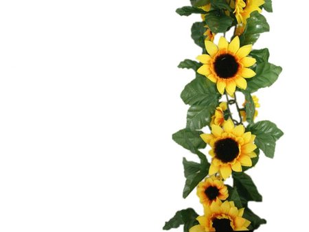 450x338 Sunflower Border Clipart 2118702