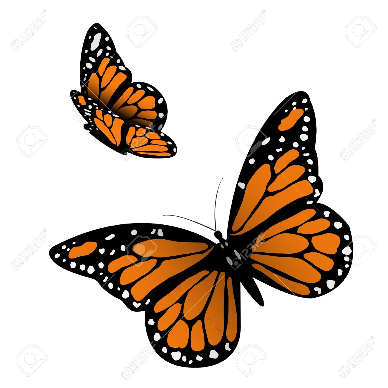 1300x1300 Monarch Butterfly On Sunflower Clip Art Cliparts