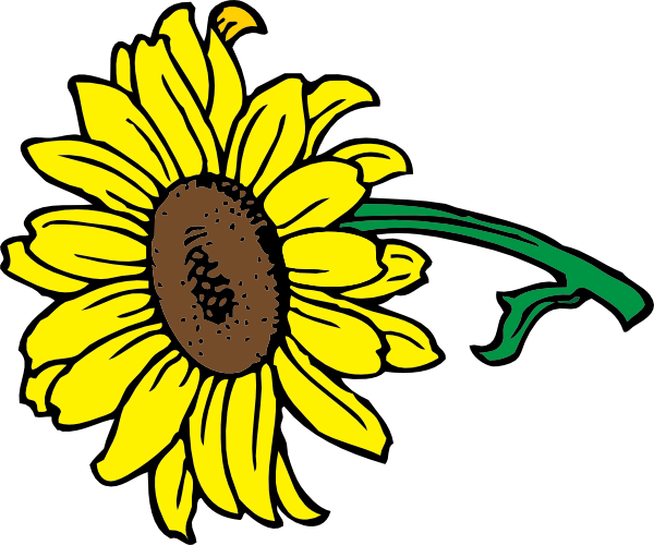 600x500 Sunflower Clip Art