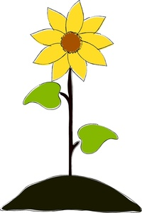 200x300 Sunflower Clipart Image