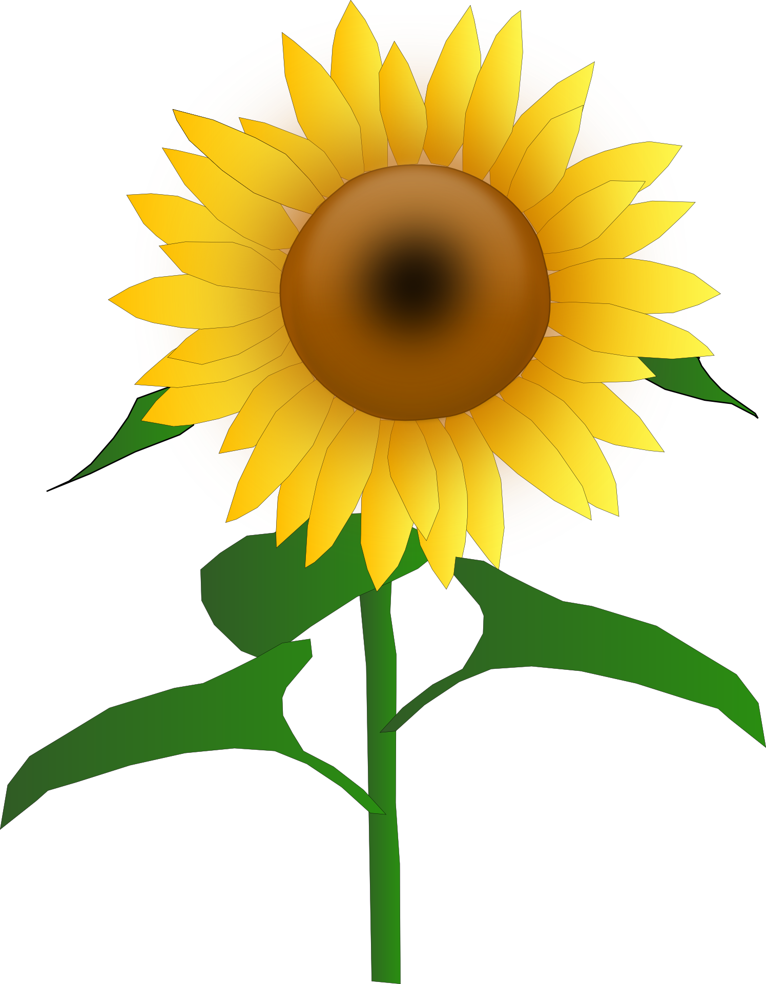 1495x1920 Sunflower clipart commercial use