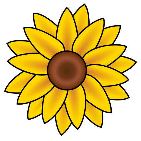480x480 Filesunflower Clip Art.svg Clipart Panda