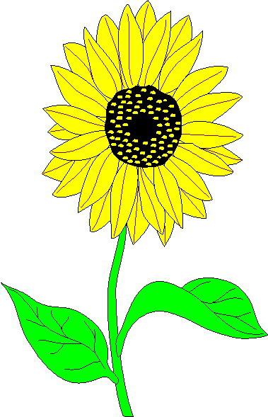 379x589 Sun Flower Clip Art