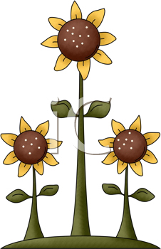 226x350 Sunflower Clipart Country