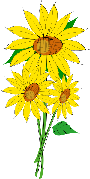 300x592 Sunflowers Clip Art