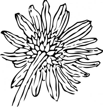 410x425 Drawn Sunflower Line Art