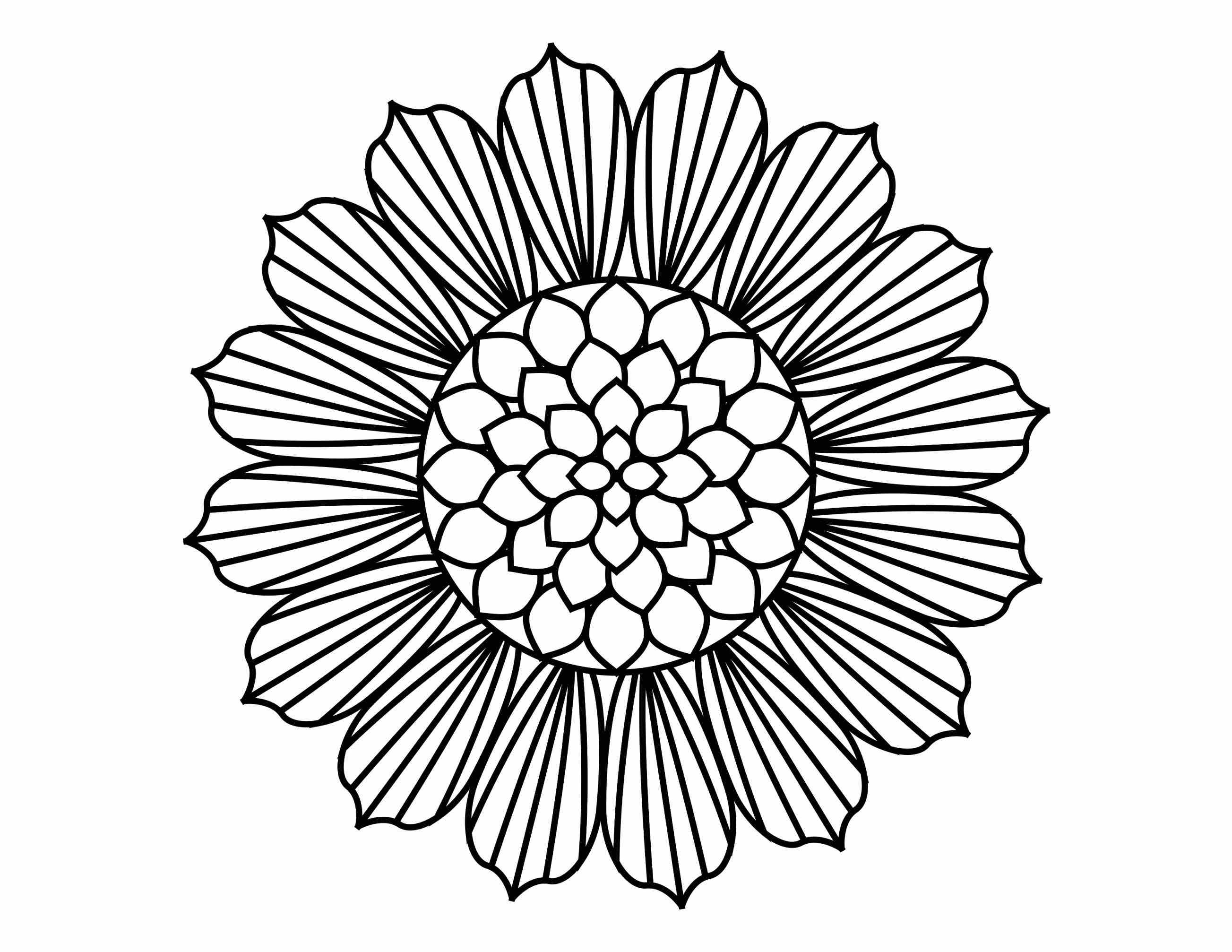 2607x2014 Simple Sunflower Drawing