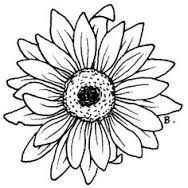 188x188 Sunflower Outline Tattoo Adobe Photoshop Elements Body Ink