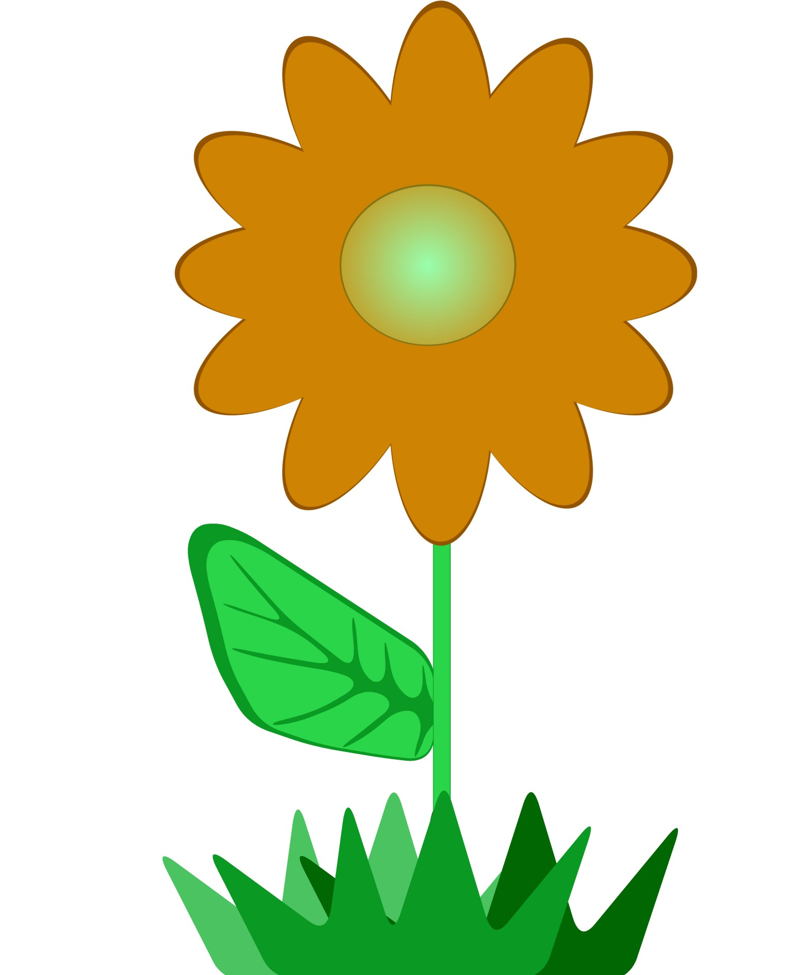 1600x1920 Flower Clip Art 2 Free Stock Photo