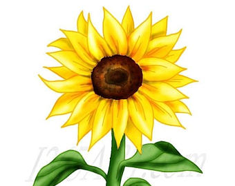 340x270 Sunflower Clip Art Silhouettes Summer Sun Flower Clipart