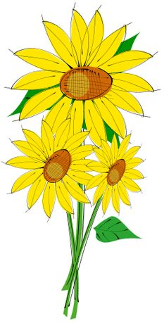 233x459 Sunflower Clip Art Designs, Clipart Amp Silhouette Things