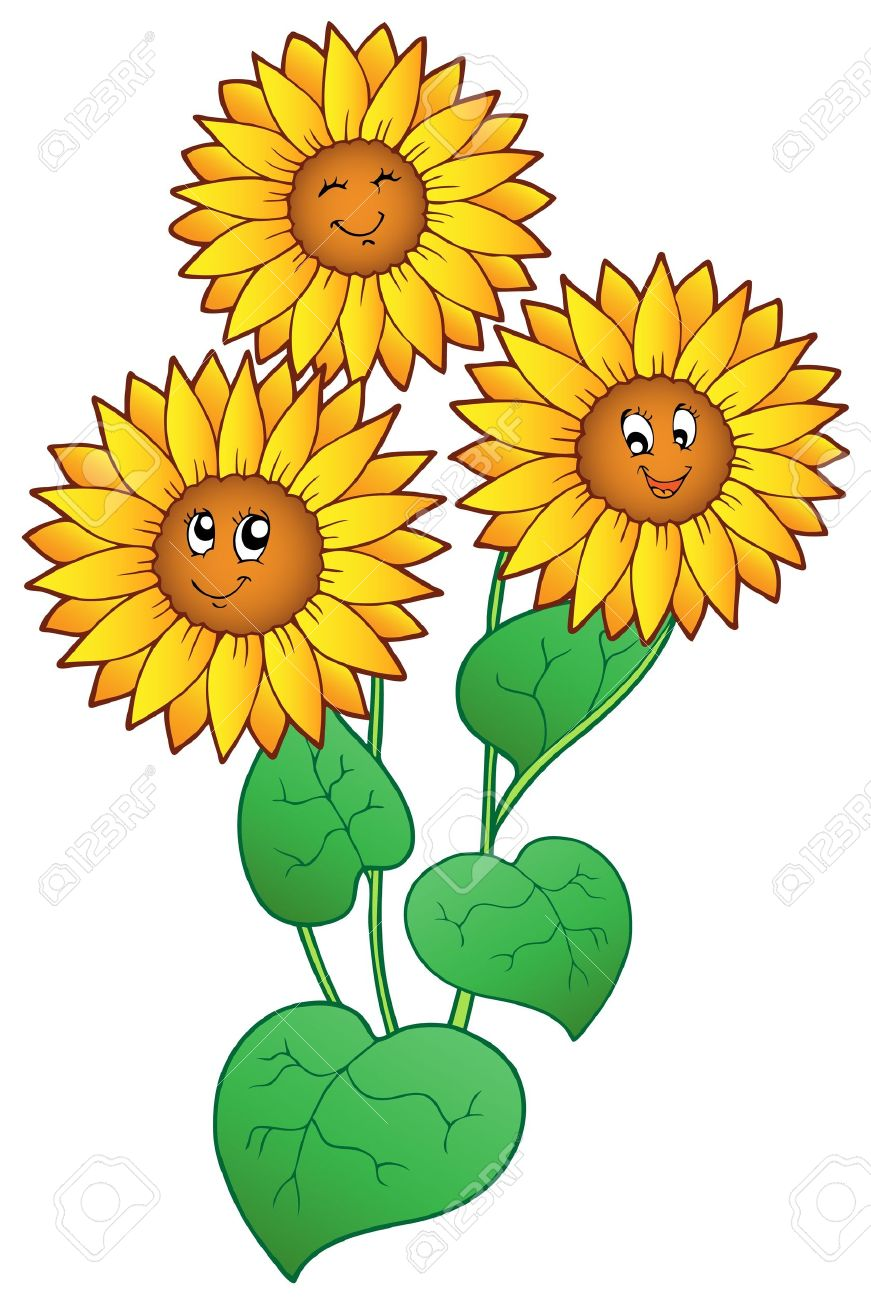871x1300 Sunflower Clipart Sunflower Plant