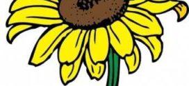 272x125 Sunflower Clip Art Clipart Free Clipart Microsoft Clipart