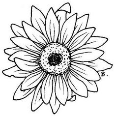 236x236 Printable Free Sunflower Flowers Colouring Pages For Little Kids