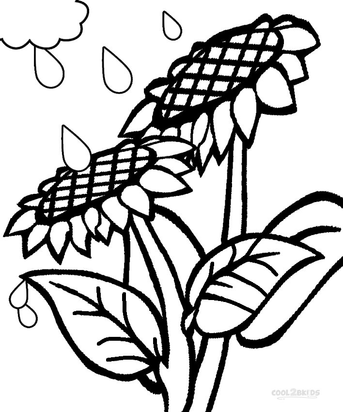 708x850 Printable Sunflower Coloring Pages For Kids Cool2bkids