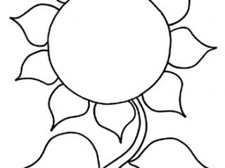 320x240 Printable Pictures Of Sunflowers Sunflower Coloring Page Kinderart