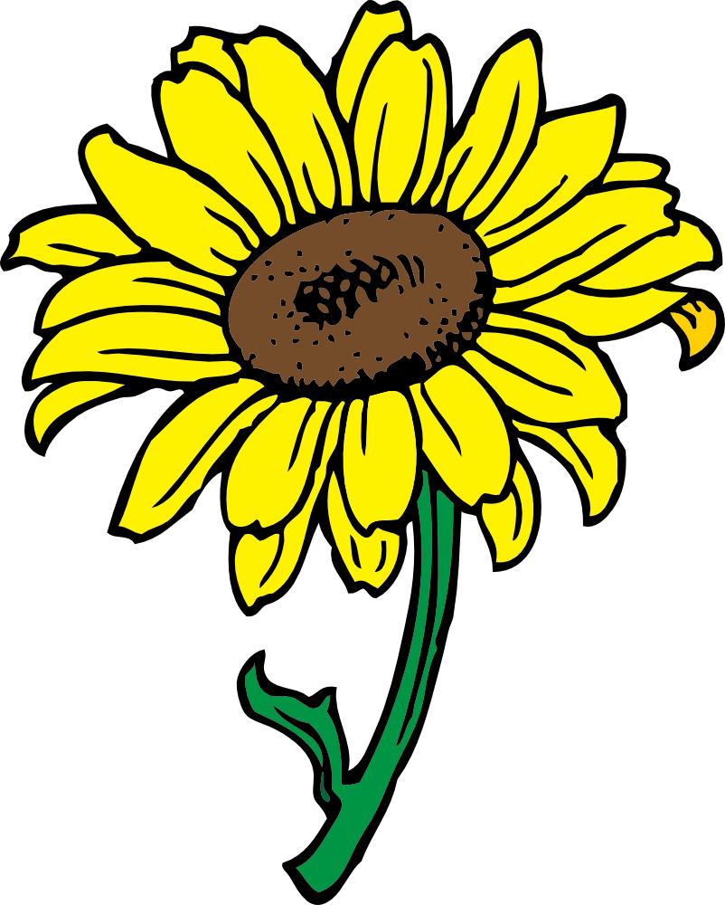 802x1000 Sunflower Free Printable Clipart