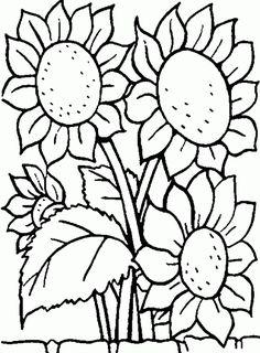 236x320 Sunflower Pattern Printable