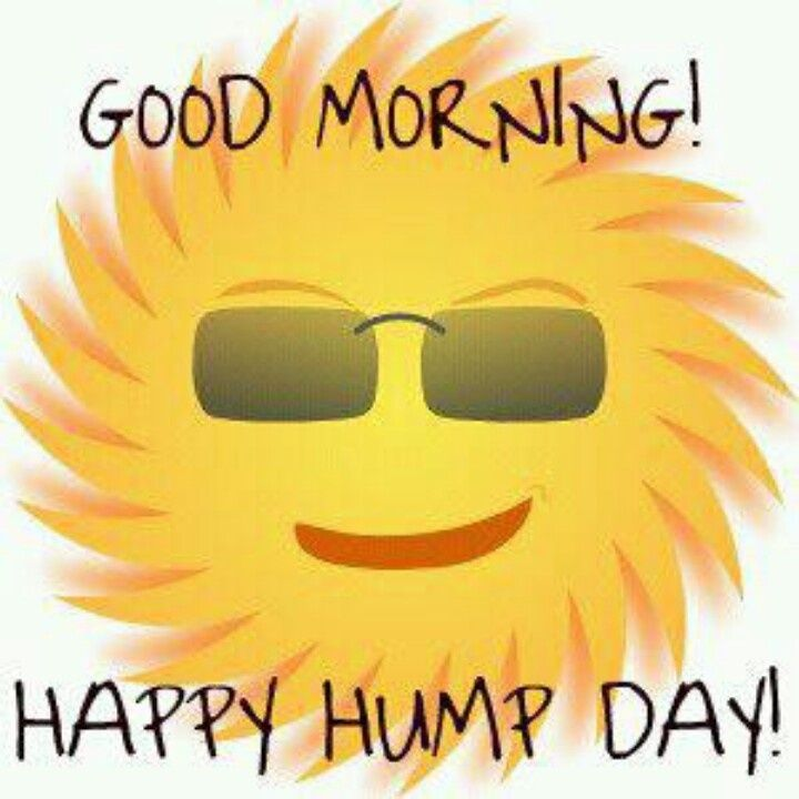 720x720 Happy Hump Day Clipart