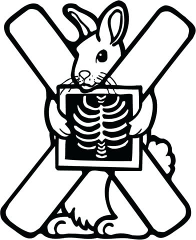 392x480 X Ray Clipart Preview Larger X Ray Clipart Free Memocards.co