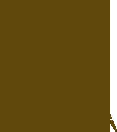 238x268 Davison Land Surveying Inc.