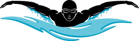 541x160 Swimming Clipart Swim Team