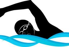 235x160 Sensational Design Swimmer Clip Art Swimming Pictures Free Clipart
