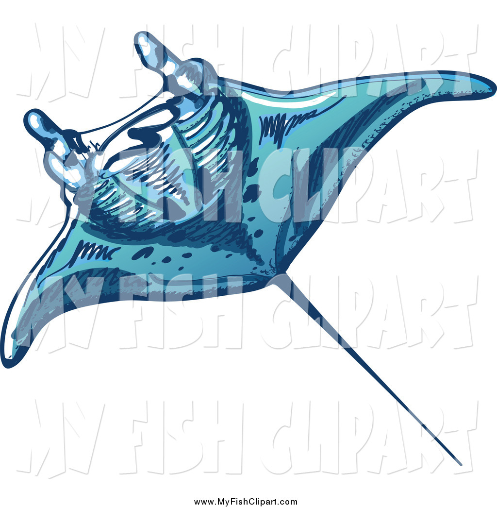 1024x1044 Clip Art Of A Swimming Blue Sting Ray By Zooco