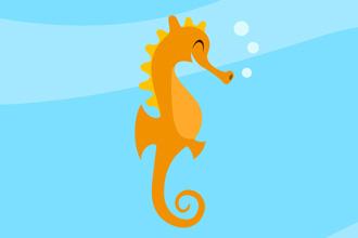 330x220 Swim Programme Joyful Dolphin Swim