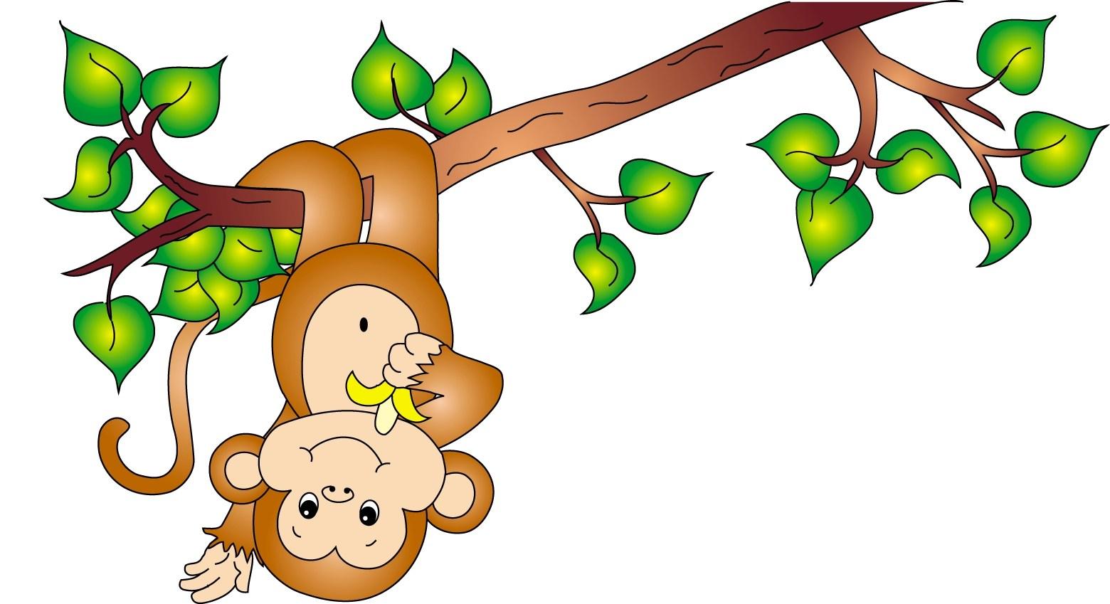 1560x849 How To Catch A Monkey