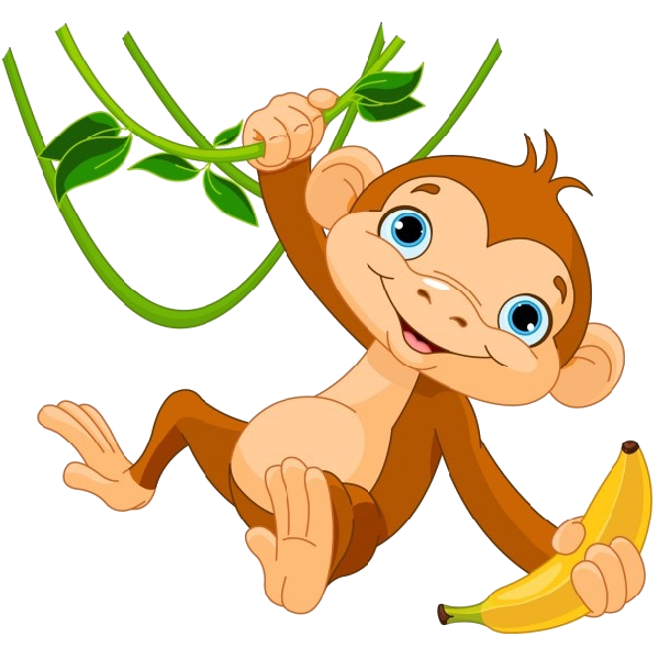 600x600 Monkey Images Clipart