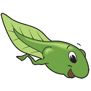 tadpole clipart free download best tadpole clipart on Best Teacher Animations animated gif teachers day
