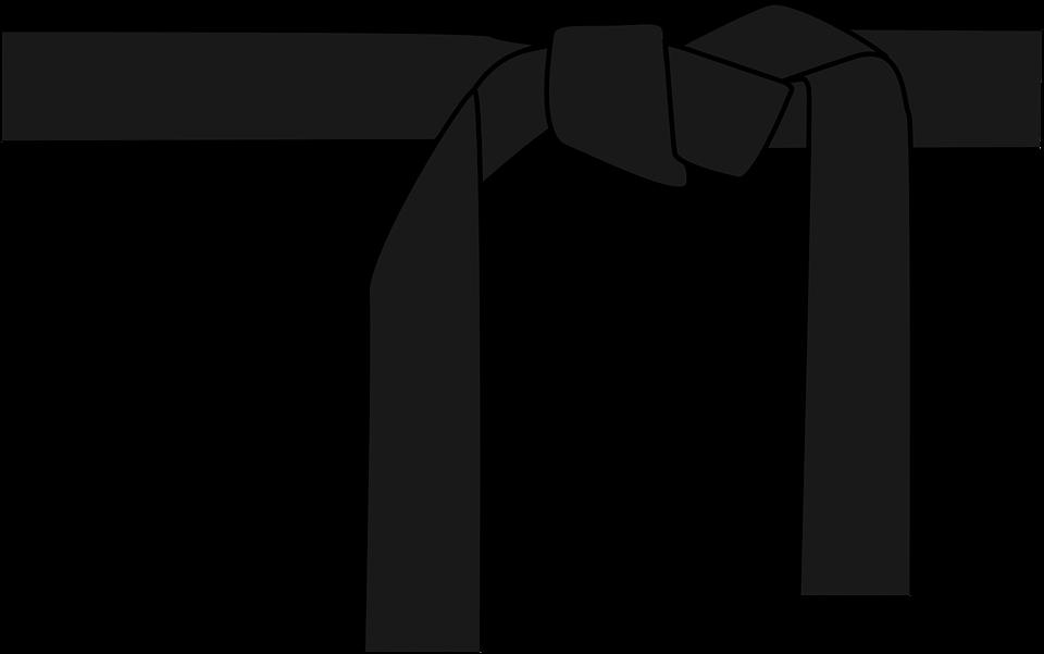 960x601 Martial Arts Clipart Taekwondo Black Belt