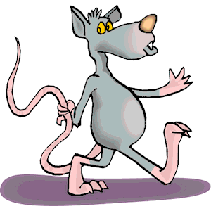 300x300 Rat Holding Tail Clipart, Cliparts Of Rat Holding Tail Free