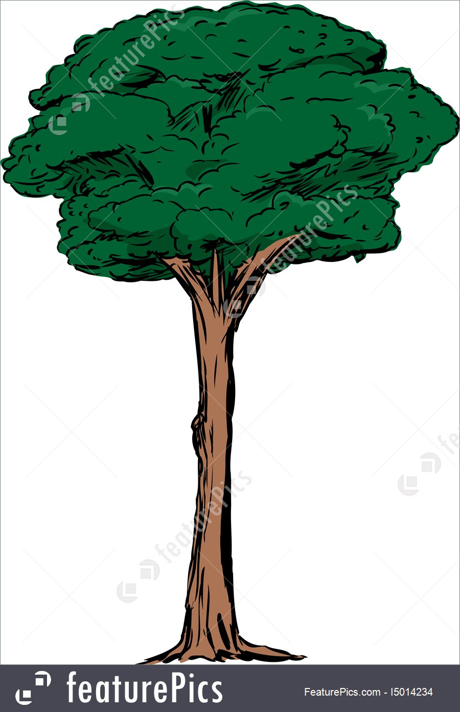 Tall Clipart | Free download best Tall Clipart on ...