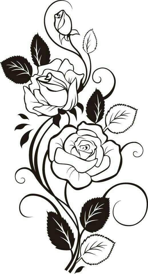 518x954 My Fabric By Gulab 2 Master Mojnu Fabrics