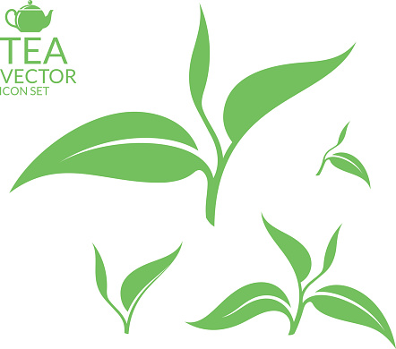 Tea leaf clip art free download best tea leaf clip art on 442x390 graphics for green tea leaf graphics thecheapjerseys Image collections