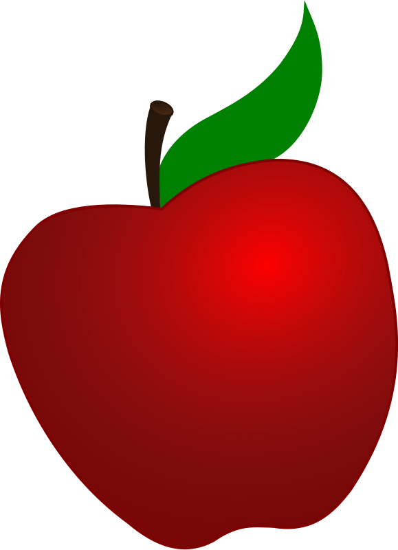 579x800 Teacher Apple Clipart