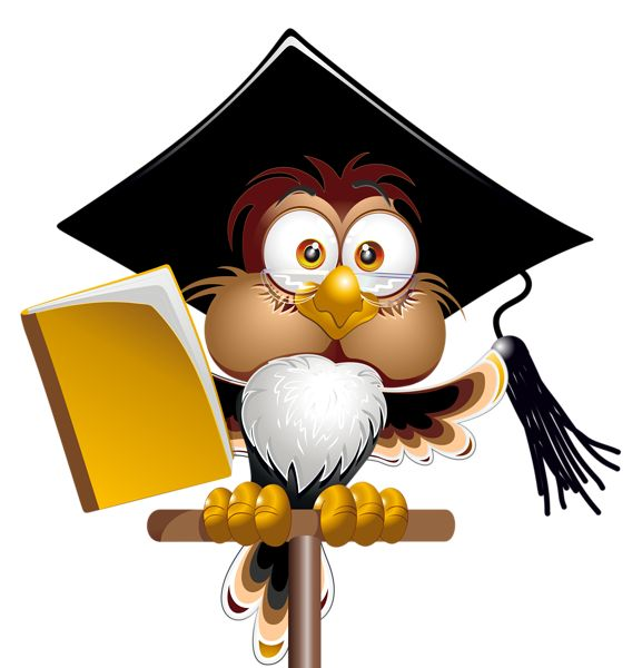 577x600 235 Best Coruja Professor Images Owl, Book Worms